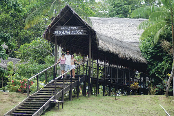 Amazon jungle muyuna